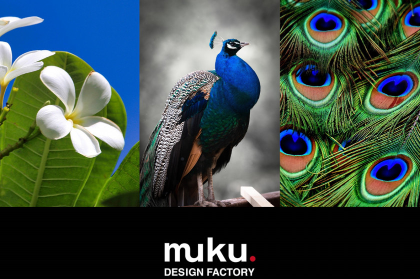 muku.DESIGN FACTORY